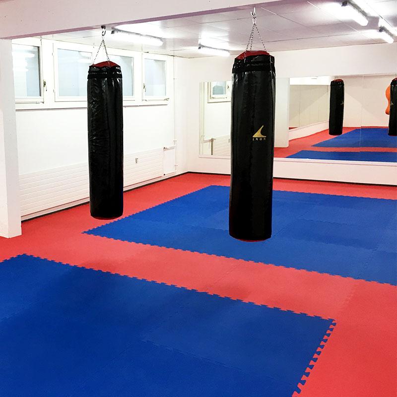 Trainingsraum mit Spiegeln, Matten und Boxsäcken von Dojo Winti in Winterthur